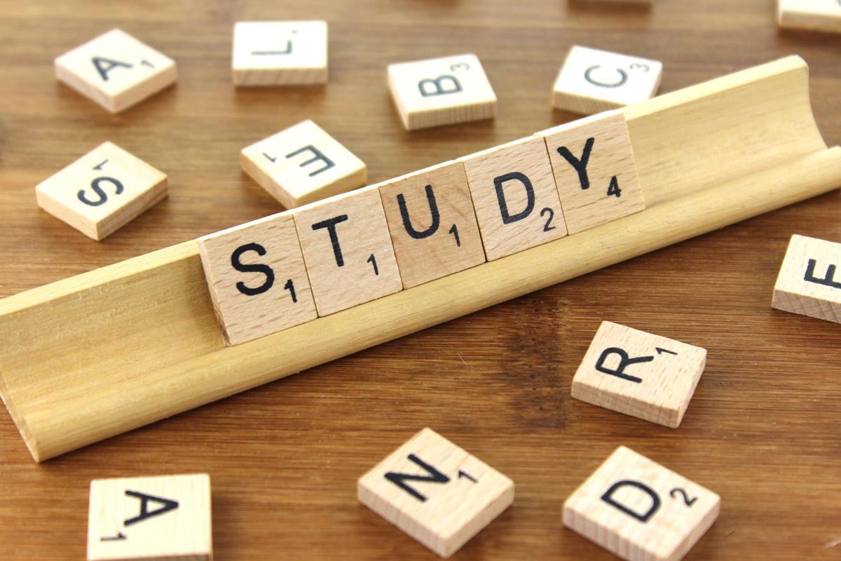 Учебные курсы онлайн